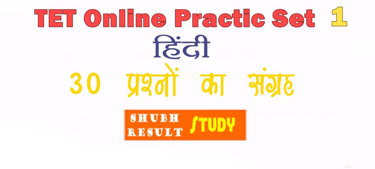TET Online Practice Set-3 Hindi
