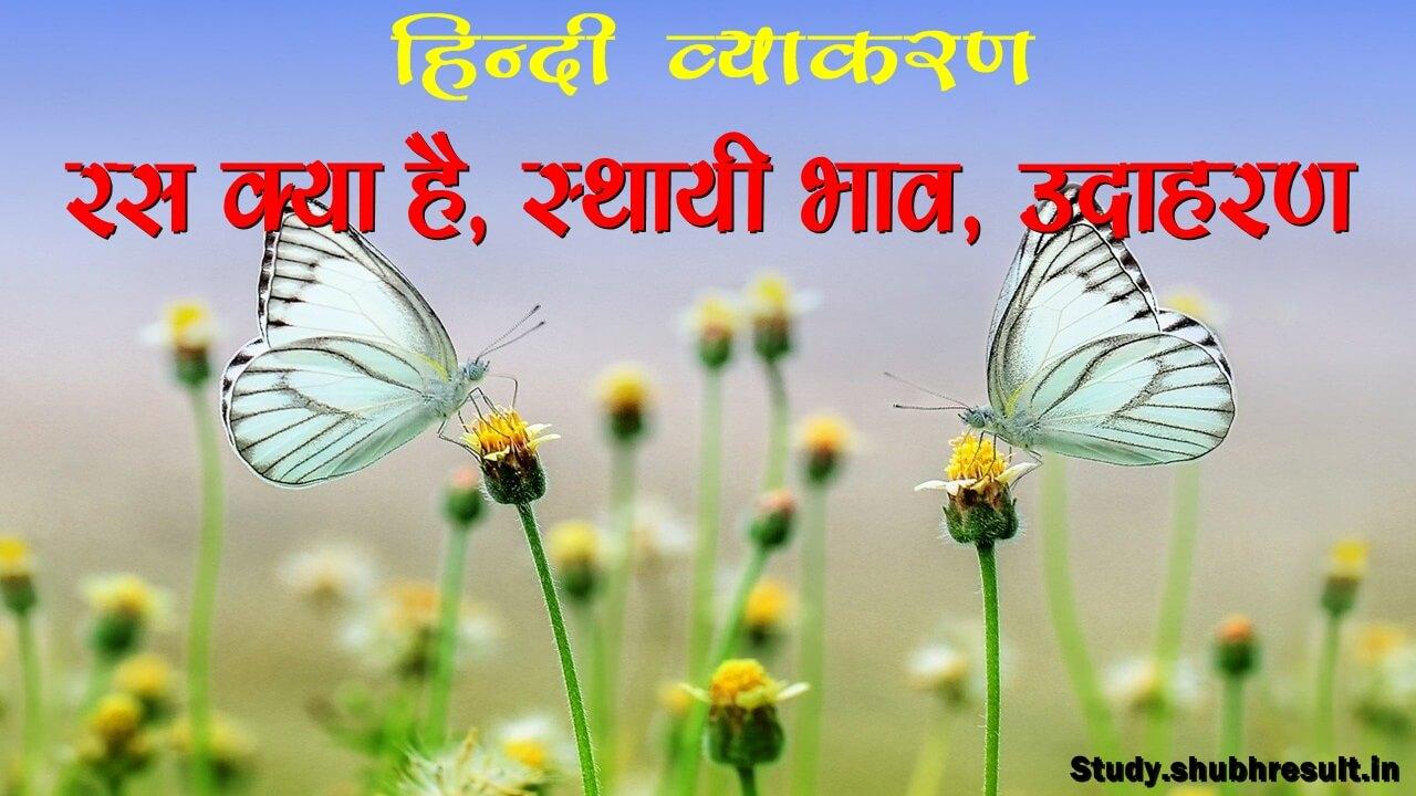What is Ras in Hindi Grammar   रस क्या है?