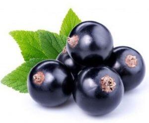 black-currant fruit name in hindi