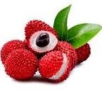 lychee fruit name in hindi