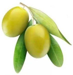 olive-fruit fruit name in hindi