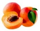 APRICOTE fruit name in hindi