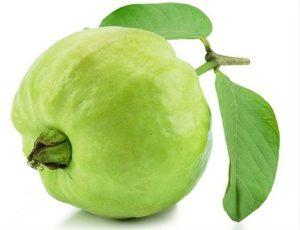 guava fruit name in hindi