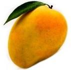 mangofruit name in hindi